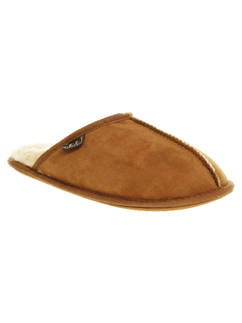Brown Slip ons